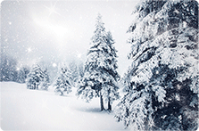 Snowy Trees Card Template